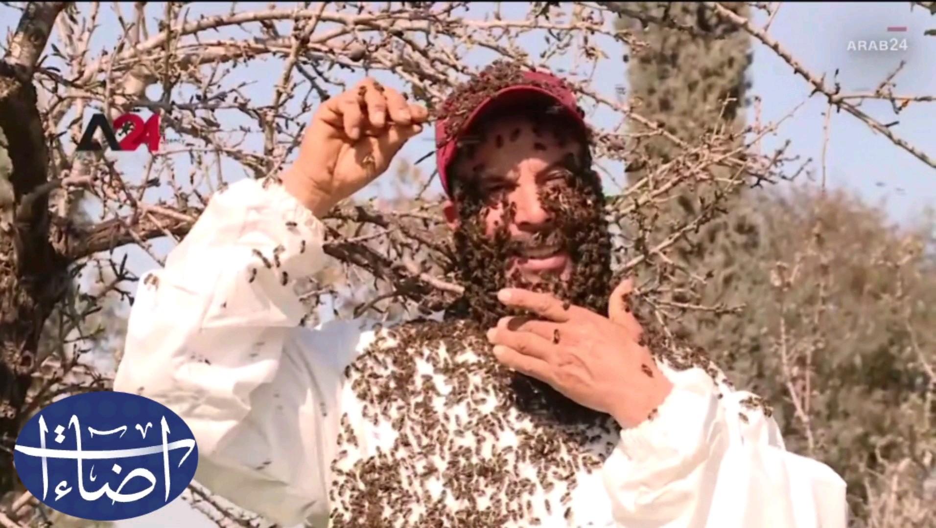 غرائب وطرائف لحية من النحل على وجه شاب تونسي إضاءات